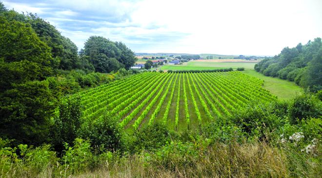 Fortsatt nej till gårdsförsäljning från regeringen.